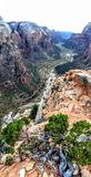 Panorama vertical da vista dos anjos que aterram Zion& x27; parque nacional de s Foto de Stock