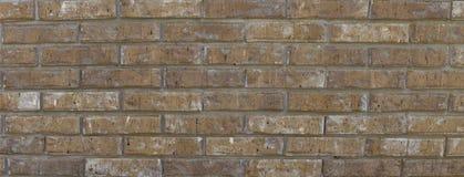 Panorama vertical de la pared de ladrillo Fotografía de archivo