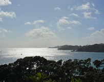 Panorama verticale della baia di Oneroa, isola di Waiheke, Auckland Fotografia Stock