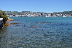 Panorama verticale di primo mattino della città & di Wellington Harbour Fotografie Stock