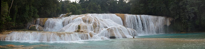 Panorama view of Agua Azul waterfall, Yucatan  Peninsula, Mexico Royalty Free Stock Photography
