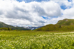 Panorama view of the Alps in Ticino Stock Photography