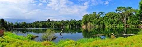 Panorama view of a beautiful lake Royalty Free Stock Image