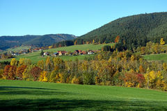 Panorama view of Black Forest in autumn Stock Image