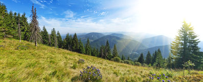 Panorama view of the Carpathian Mountains above Lake Sinevir. Stock Photography