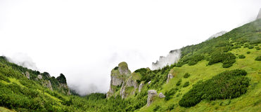 Panorama view from ceahlau montains Royalty Free Stock Image