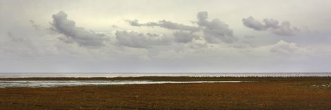 Panorama view on the east coast of the Dutch wadden island Texel, in the Netherlands. The shore is flooded by brackish water during high tides and that leads royalty free stock photos