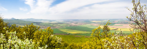 Panorama view at green fields. View from green forest in the foreground on distant fields and meadows during a sunny spring morning Stock Photos