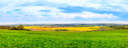 Panorama view of green fields Royalty Free Stock Photo