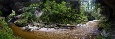 Panorama view of Honeycomb Hill Arch, New Zealand Royalty Free Stock Images