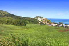 Panorama view from the Island Dominican Republic. Stock Image