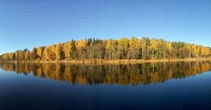 A panorama view of a lake and forest in reflection. With a blue sky in background Royalty Free Stock Images