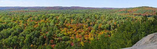 Panorama View from Lookout Trail Algonquin Park. Beautiful panorama of colorful trees from Lookout Trail in Algonquin Park, Ontario, Canada royalty free stock image
