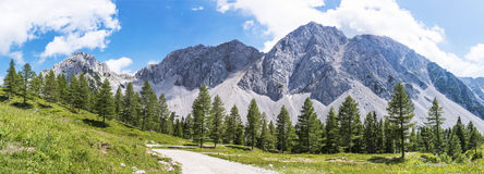Panorama view of Maltschacher Alm and Karawanks with mountain St Royalty Free Stock Photography