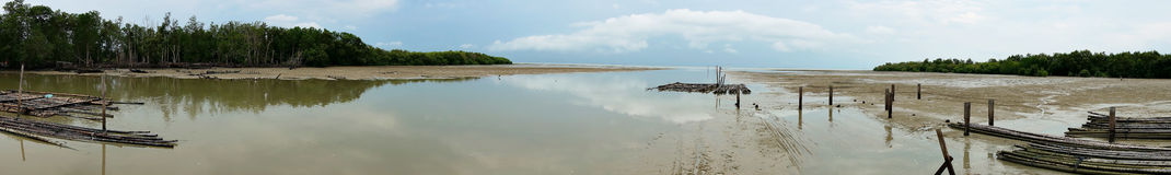 Panorama view of mangrove. Reflected and cloudy Royalty Free Stock Image
