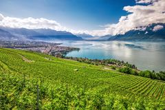 Panorama view of Montreux city with Swiss Alps, lake Geneva and vineyard on Lavaux region, Canton Vaud, Switzerland, Europe.  royalty free stock images