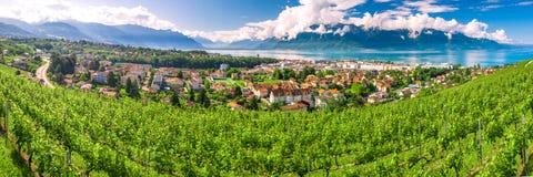 Panorama view of Montreux city with Swiss Alps, lake Geneva and vineyard on Lavaux region, Canton Vaud, Switzerland, Europe.  stock photo