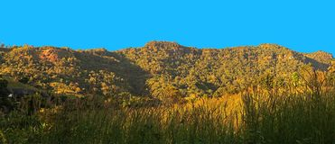 Panorama View of Mountain with Grass Foreground and Blue Sky Stock Photo