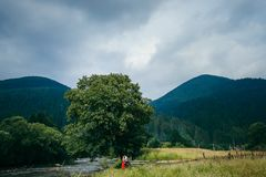 Free Panorama View Of The Beautiful Landscape Of The Mountains Covered With Green Trees. The Attractive Couple Is Hugging On Stock Photo - 111013530