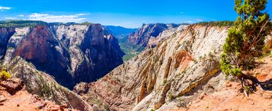 Free Panorama View Of The Zion Canyon In Utah Stock Photography - 153698162