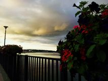 Panorama. View of the river and beautiful clouds and flowers Royalty Free Stock Photo