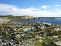 A panorama view of a sea shore with stones. An overview of the White sea coast line. A littoral tide zone with stones and aglae. Blue sky with some clouds stock photo