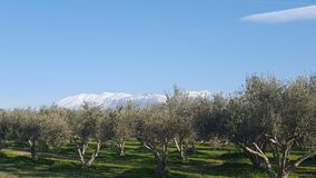 Panorama view. View of snow covered mountain tops Stock Images
