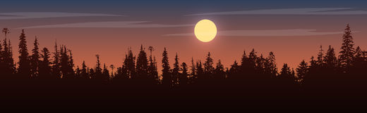 Panorama of view to trees on sunset. Silhouette of the forest at the twilight.Panorama of view to trees on sunset time.Vector color version Royalty Free Stock Images