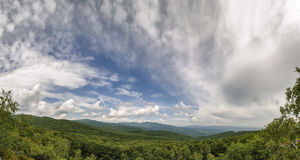 Panorama. View from the top. Panorama. View from the top on deciduous forest Stock Photography