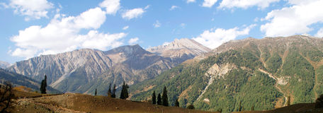 Panorama view of valley at Sonamarg, Kashmir, India Stock Images