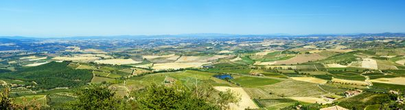 Panorama View of vineyard and green field. Montalcino countryside, Tuscany, Italy. Panorama Beautiful view of vineyard and green field. Montalcino countryside stock photos