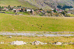 Panorama with village Stepantsminda in Georgia Stock Images