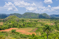 Panorama of Vinales Valley Stock Photos