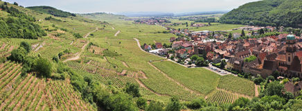 Panorama of a vineyard and a village in France. Panorama of a vine in Alsace, France in front of a village and mountains stock images