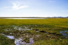 Panorama of volcanic lake and fields in Iceland royalty free stock photo