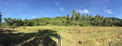 Panorama vom Ackerland stockbild