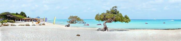Panorama vom Adlerstrand auf Aruba-Insel Stockbild