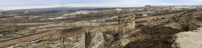Panorama von Aral-Meer von der Usturt Hochebene Stockbilder