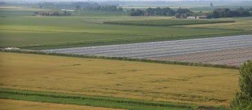 Panorama von bebauten Feldern im beträchtlichen PO-Tal in Zentrale I Lizenzfreie Stockfotografie