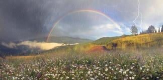 Panorama von Bergwiesen im Transcarpathia Stockfoto