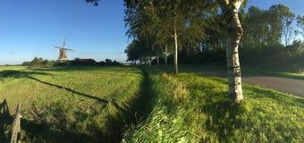 Panorama von der Windmühle De Hond Lizenzfreie Stockfotos