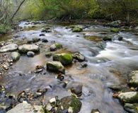 Panorama von einem wilden Fluss Lizenzfreie Stockbilder