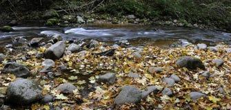 Panorama von einem wilden Fluss Stockfotos