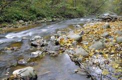 Panorama von einem wilden Fluss Lizenzfreies Stockbild