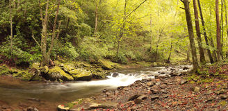 Panorama von Fluss in großem Smokey Mountains National Park Stockbild