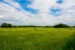 Panorama von Grünfeldern von der Spitze des Schlosses Bolkow Polen Stockbild