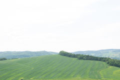 Panorama von Grünfeldern von der Spitze des Schlosses Bolkow Polen Lizenzfreies Stockfoto