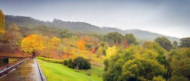 Panorama von Herbstbäumen Lizenzfreies Stockfoto