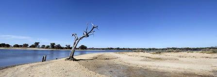 Panorama von Leschenault-Mündung West-Australien lizenzfreie stockbilder
