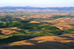 Panorama von Palouse, Washington State Lizenzfreie Stockfotografie